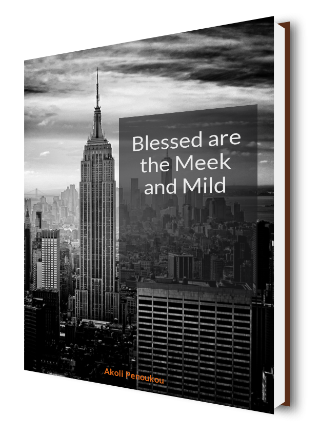 A dark eBook cover shwoing skyscrapers in the background and bearing the inscription Blessed are the meek and mild