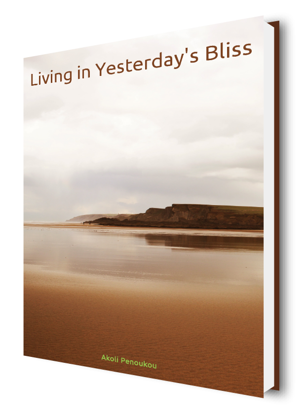 An eBook with a bright sky and a sandy shore bearing the title Living in yesterday's blisss