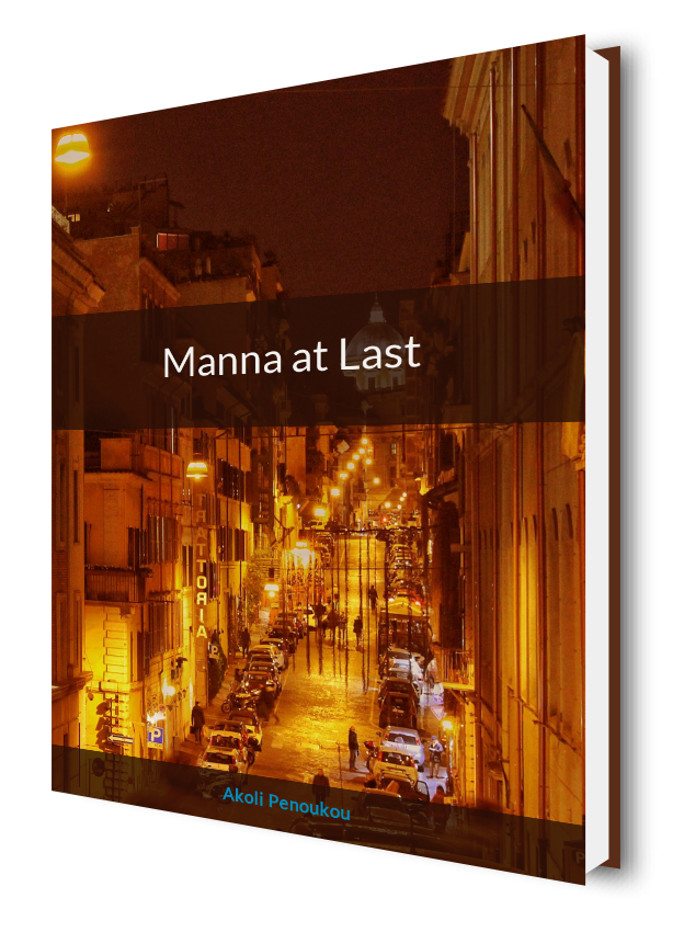 An eBook cover of a sunset city street scene and bearing the title Manna at last