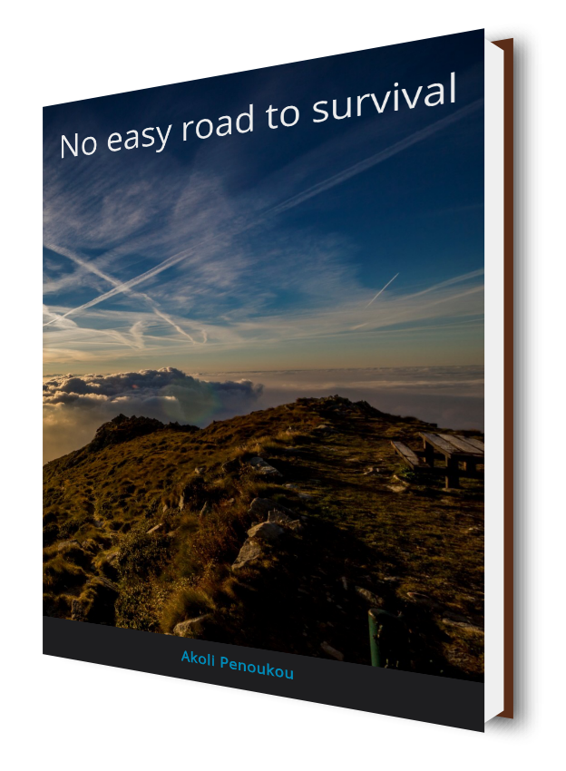 An eBook cover showing a volcanic mountain and a criss-crossed sky and bearing the title No easy road to survival