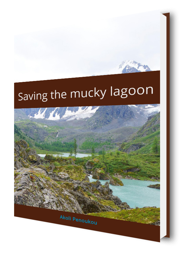 An eBook cover showing mountains in the background and rocks and lagoons in the foreground, bearing the title Saving the mucky lagoon