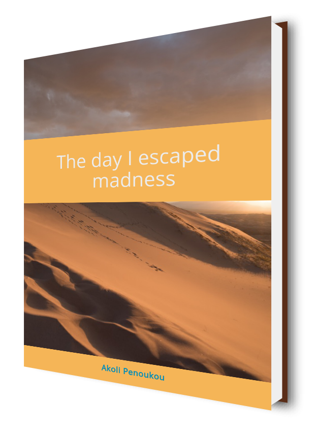 An eBook cover showing desert sand dunes and a darkening sky bearing th title The day I esxcaped darkness